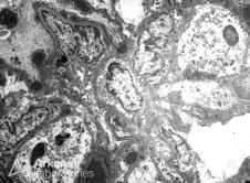 Created by Digital Micrograph, Gatan Inc.